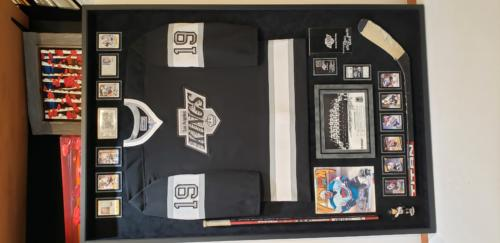 Los Angeles Kings Conservation framed Memorabilia