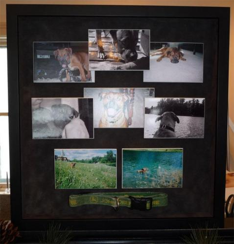 Pet Memorial Framed